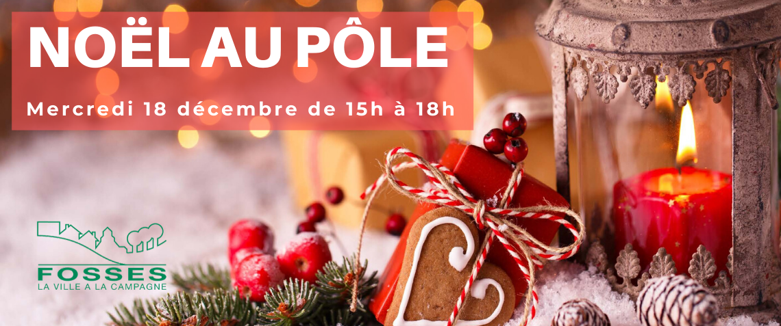 noel_au_pole_dec_2019_actu.png