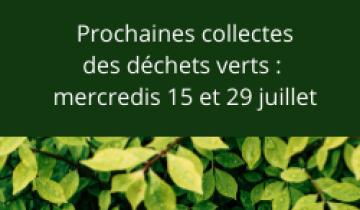 collecte_des_dechets_verts.png