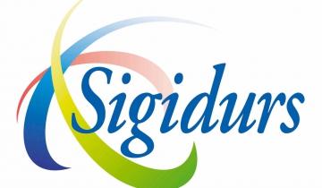 logo sigidurs