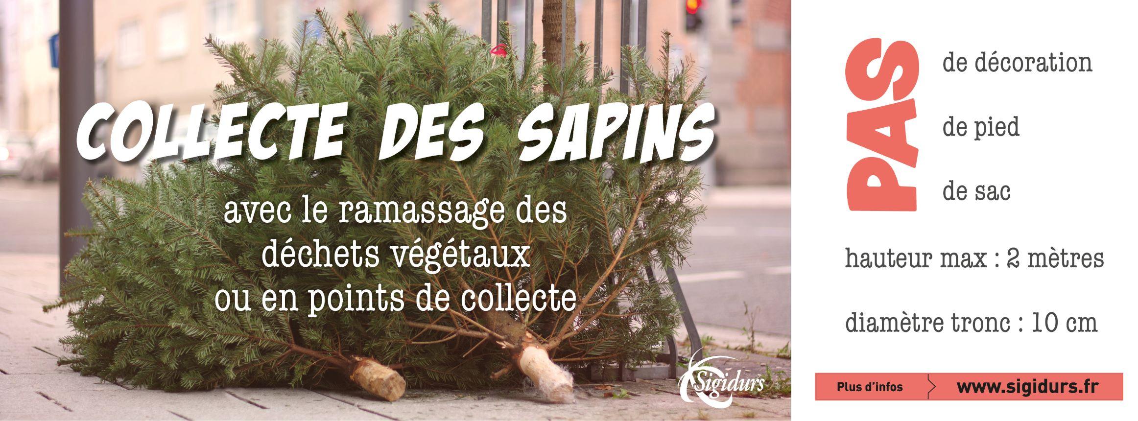 bandeau_collecte_sapin_bd.jpg